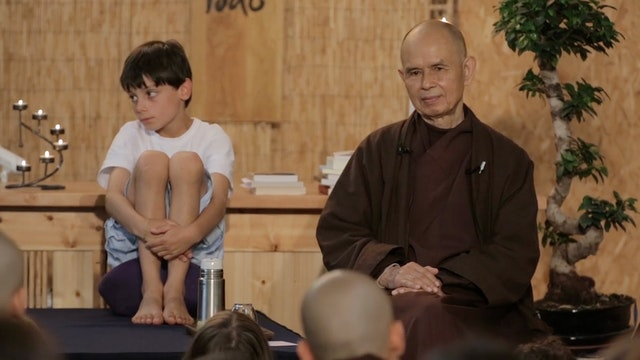 PS Video Extras - Thich Nhat Hanh QA Love hate