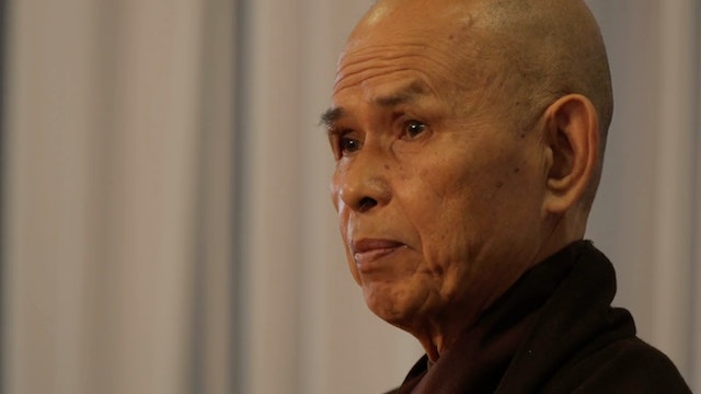 PS Video Extras - thich nhat hanh QA son and father problems
