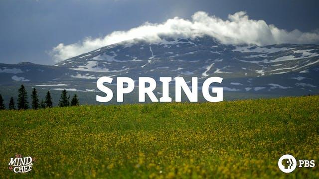 Season 3, Episode 10: Spring - Magnus Nilsson