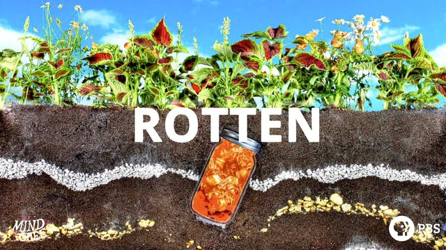 Season 1, Episode 5: Rotten - David Chang
