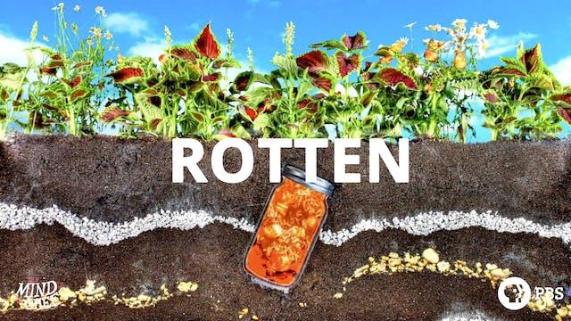 Season 1, Episode 5: Rotten - David Chang