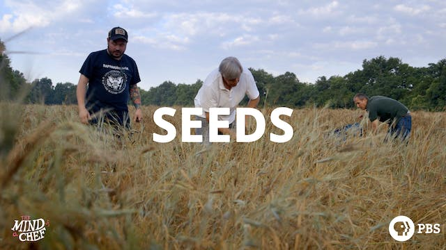 Season 2, Episode 2: Seeds - Sean Brock