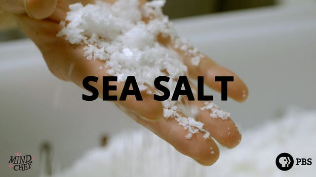 Season 2, Episode 10: Sea/Salt - April Bloomfield