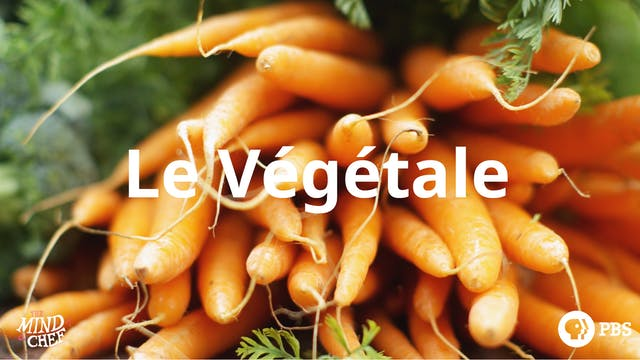 Season 5, Episode 7: Le Végétale - Lu...