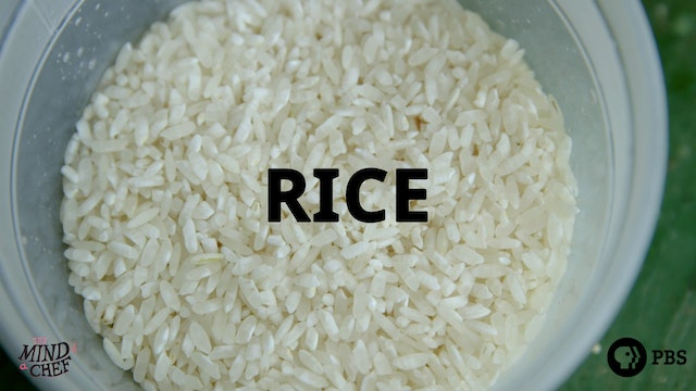 Season 2, Episode 3: Rice - Sean Brock