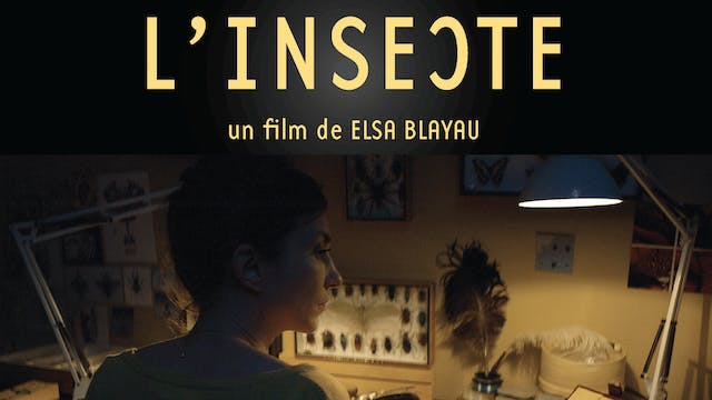 Watch The Insect Movie Online