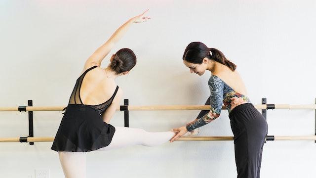 Open Level Ballet Barre