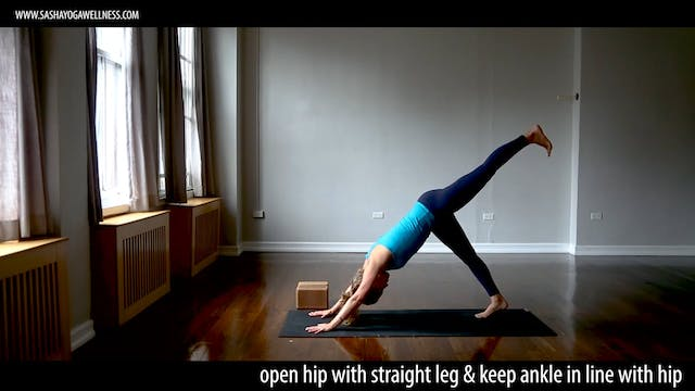 Twists with Sasha Yoga + Wellness