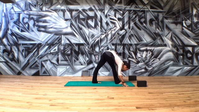 Gentle Hip Opening Yoga Flow with The Springs LA