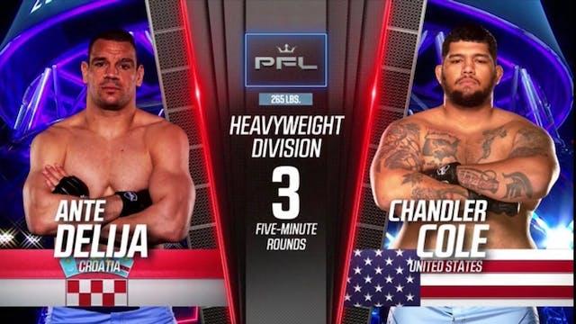 Chandler Cole vs. Ante Delija pfl 6