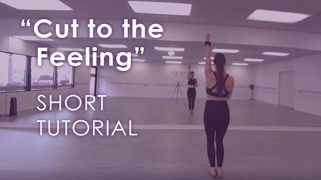 """Cut to the Feeling"" - Short Tutorial"