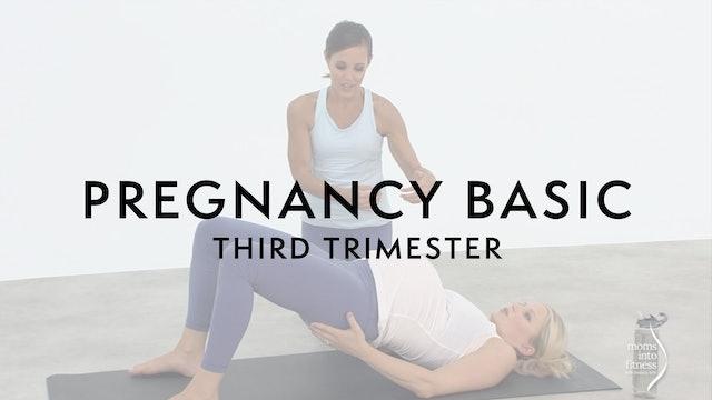 Pregnancy Basic Level: 3rd Trimester
