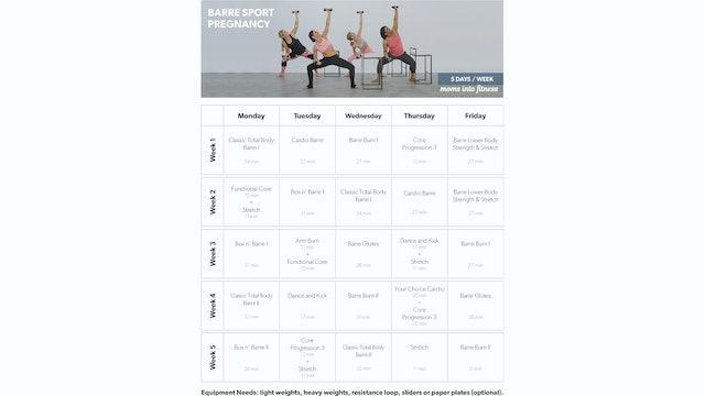 Barre-Sport-Pregnancy-Calendar.pdf