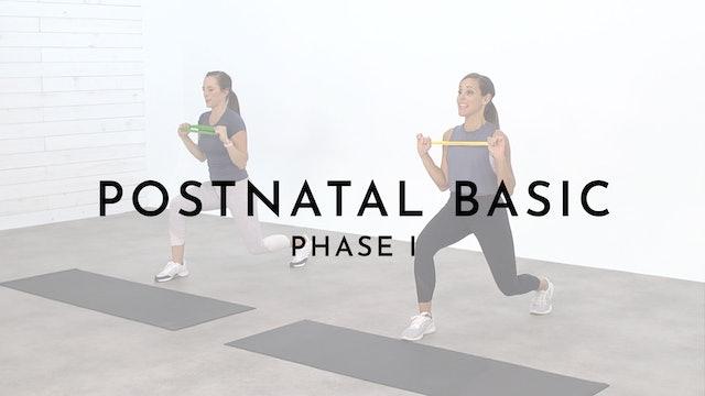Postnatal Phase 1