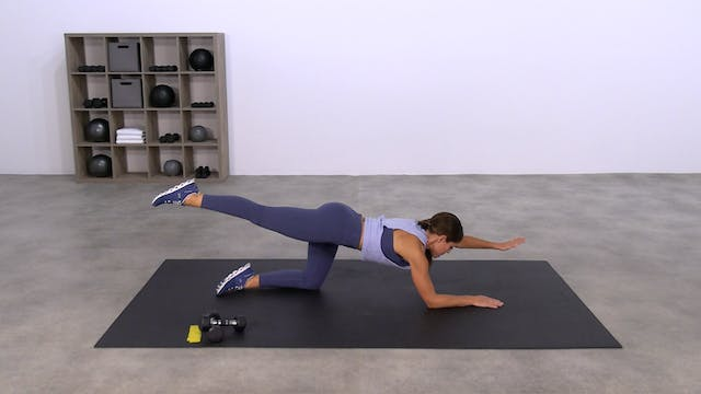 Basic Lower Body