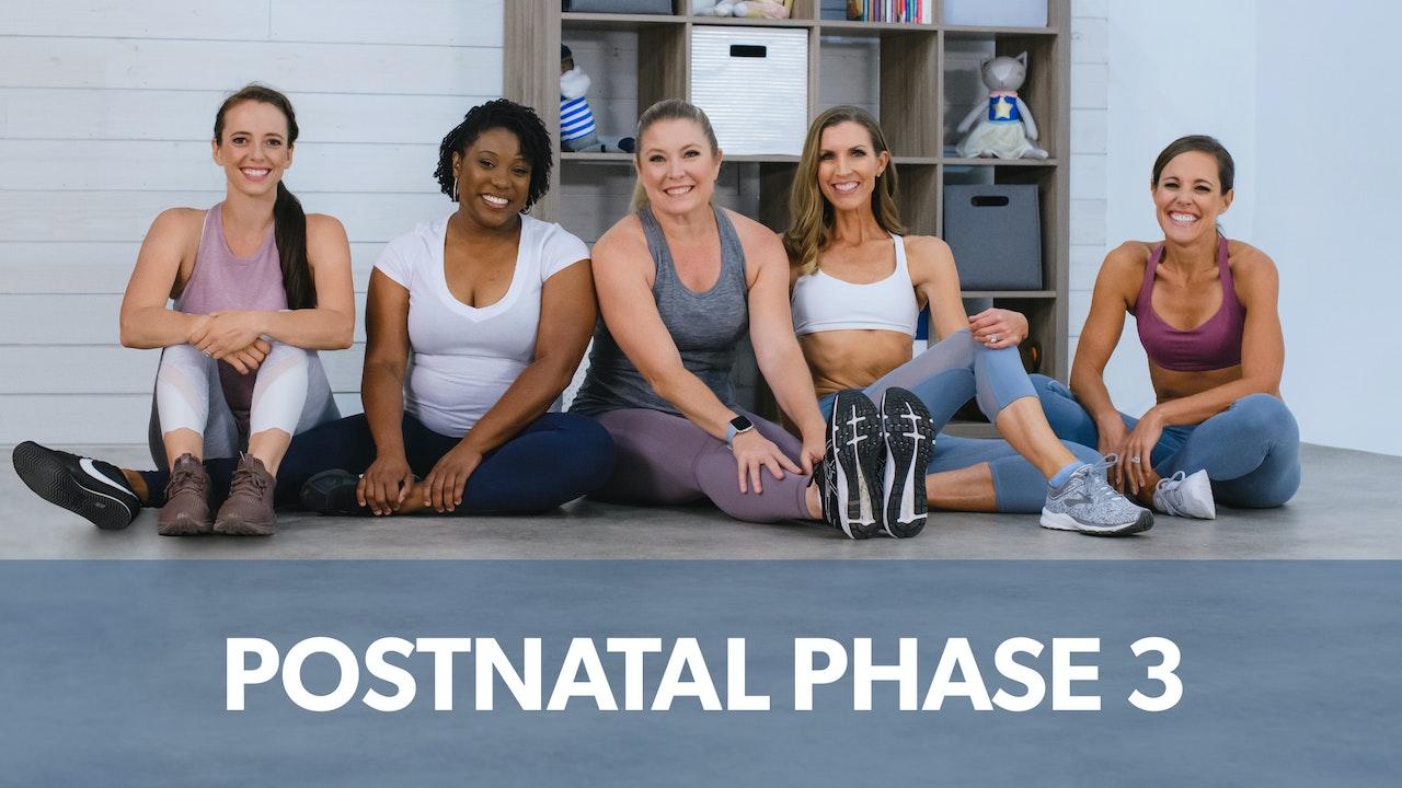 Postnatal Phase 3