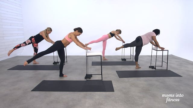 Pregnancy Full Body Classic Barre