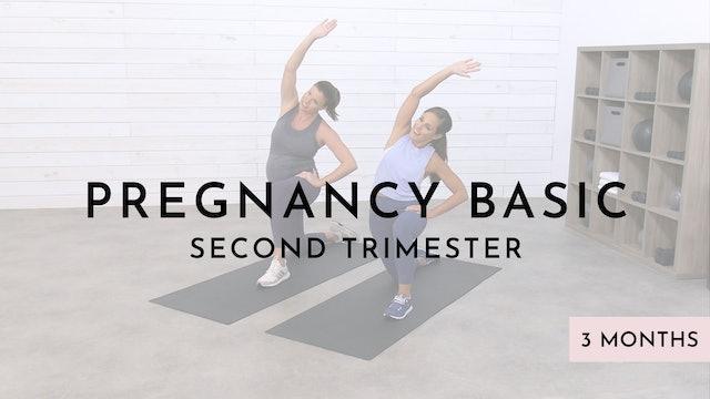 Pregnancy Basic Level: 2nd Trimester
