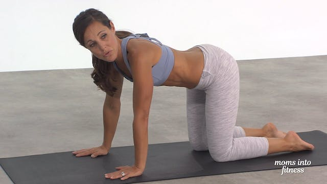 Pregnancy Approved Functional Core