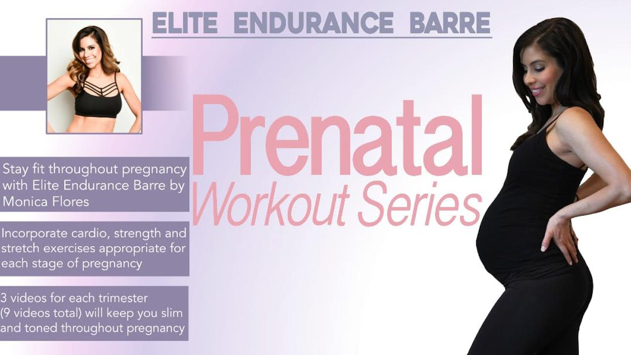 Elite Endurance Barre Fit Through Pregnancy Pack