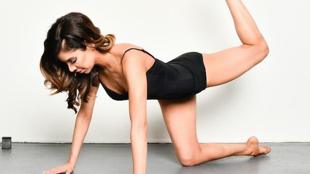 Beginner Lower Body