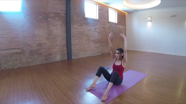 Elite Endurance Barre Core with Gliders