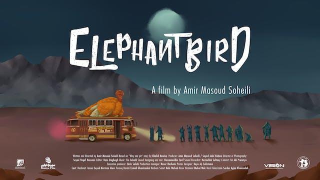Presentazione Elephantbird