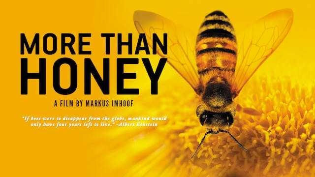 More than Honey (deluxe edition)