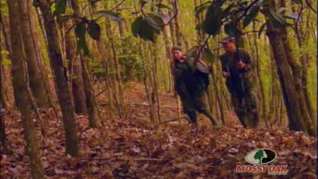 Alabama Buck Bonanza • Whitetail Deer Finding Food Plots