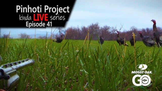 Kinda Live • Episode 41 • Pinhoti Pro...