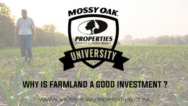 Why Is Farmland A Good Investment?