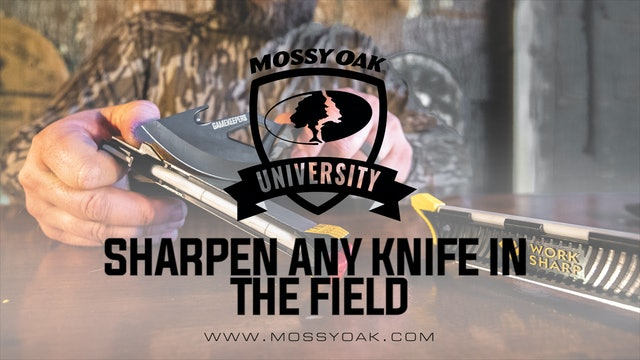 Fastest Way To Sharpen Any Knife In The Field