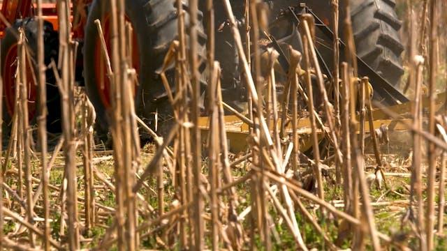 Springtime Tips • Spring Property Man...