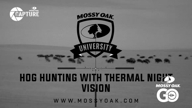 Best Way To Hunt Hogs At Night With Thermal Night Vision.Mp4