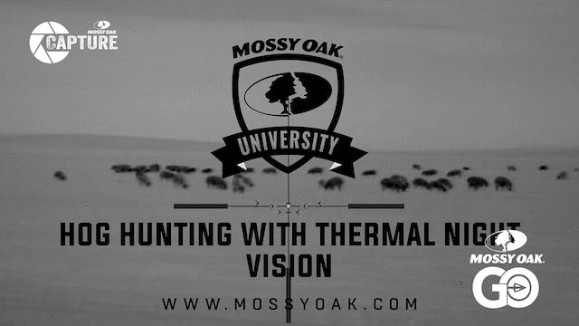 Best Way To Hunt Hogs At Night With T...