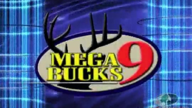 Mega Bucks 9