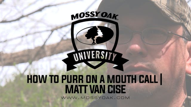 How to Purr on a Mouth Call