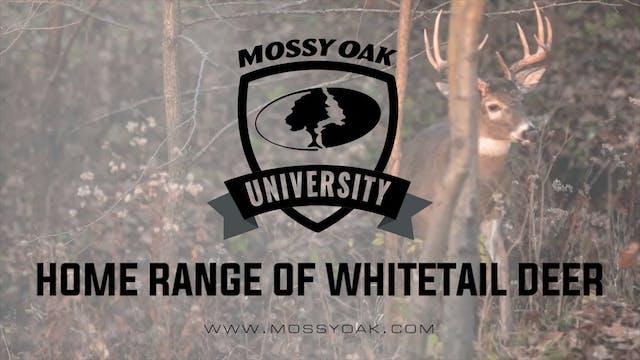 Home Range of Whitetail Deer