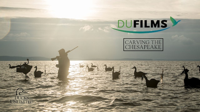 Carving the Chesapeake • DU Films