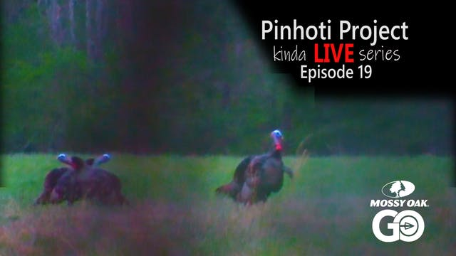 Kinda Live • Episode 19 • Pinhoti Pro...