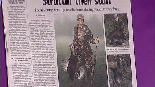 Struttin' Their Stuff • Turkeys in Pe...