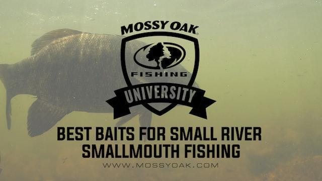 Best Baits For Small River Smallmouth Bass Fishing