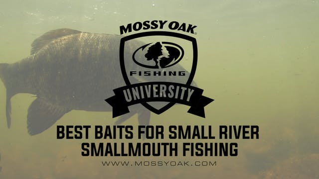Best Baits For Small River Smallmouth...