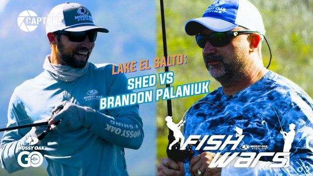 Fish Wars • Shed vs Brandon Palaniuk