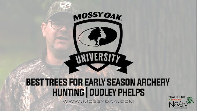 Best Trees for Early Season Bowhunting