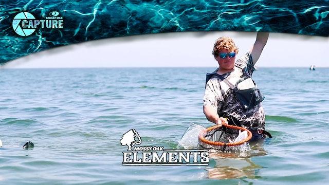 Paul Miller • Elements • Mexican Gulf Fishing Company, Louisiana • Elements
