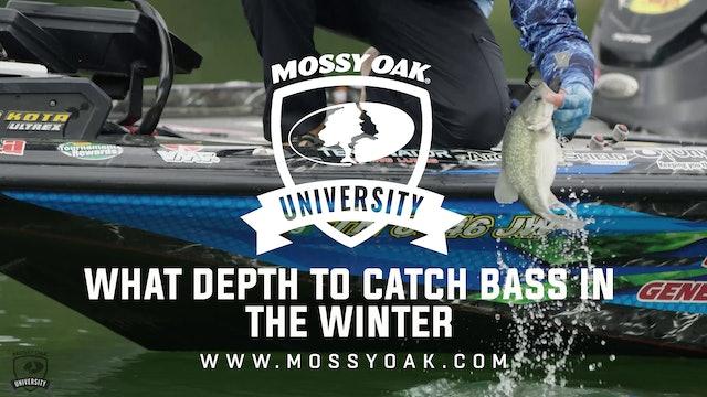 What Depth to Catch Bass in the Winter - Ott DeFoe Fishing Tips