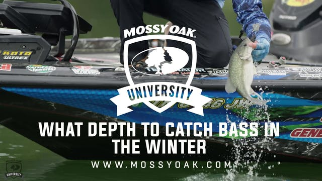 What Depth to Catch Bass in the Winte...