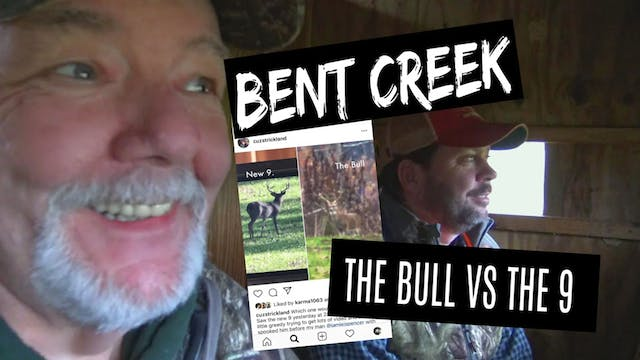 Bent Creek Lodge • The Bull vs The 9