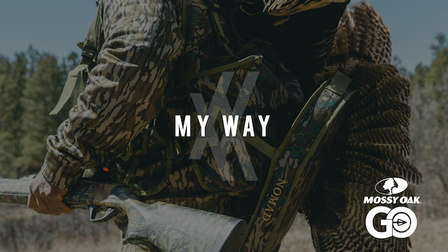 My Way • UNDIVIDED